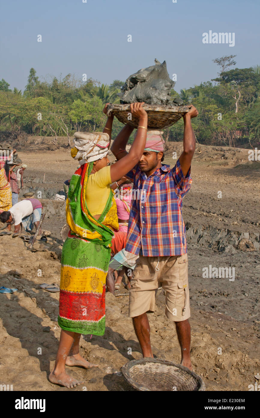men and Women labourers carrying heavy basket of earth on head West bangle, India - Stock Image