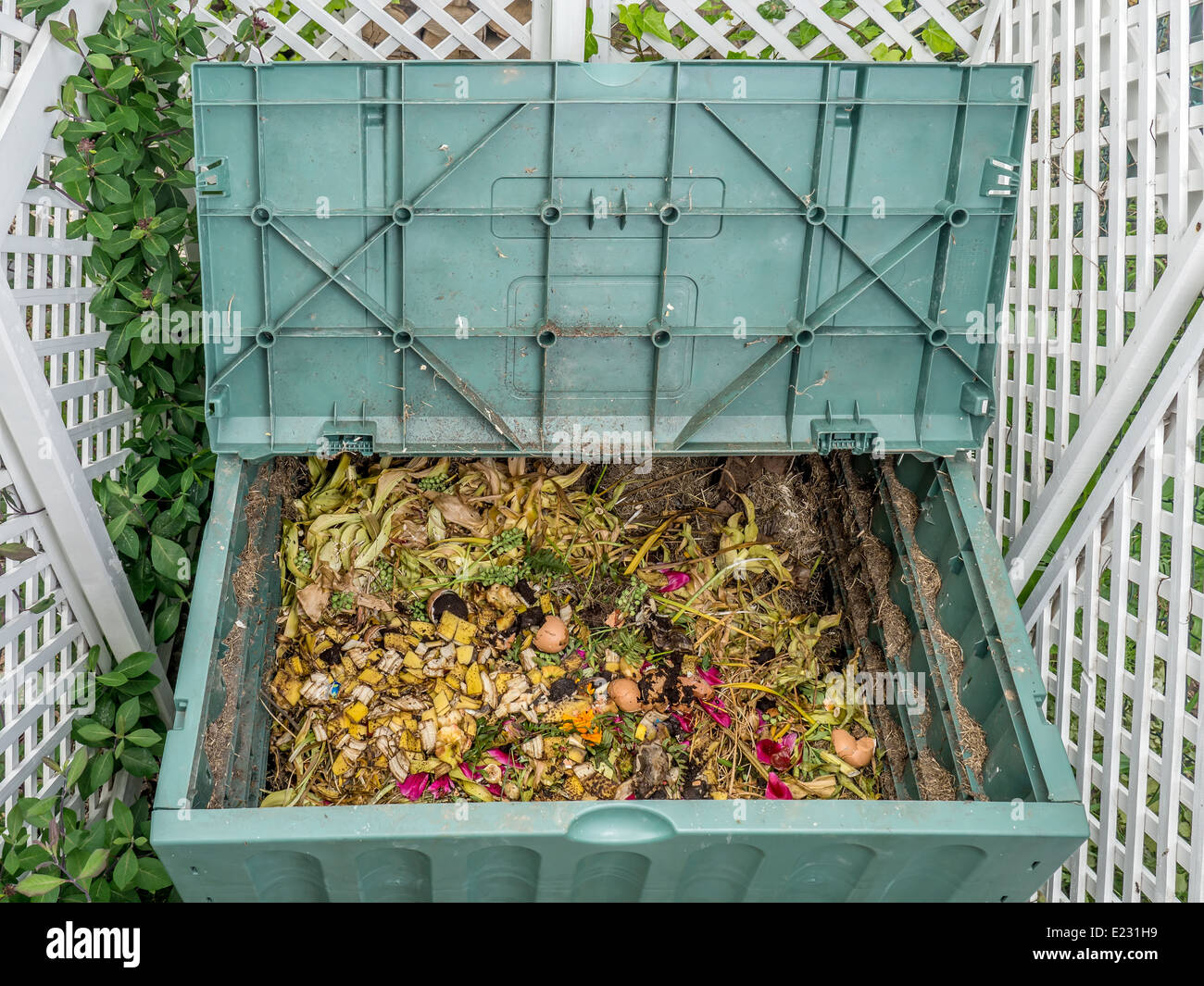 Organic Waste Plant Stock Photos & Organic Waste Plant Stock Images ...