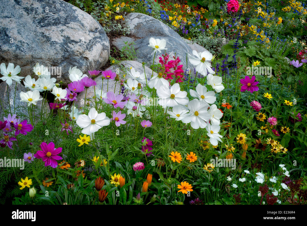 Mixed Flowers In Garden In Vail Village Vail Colorado Stock Photo