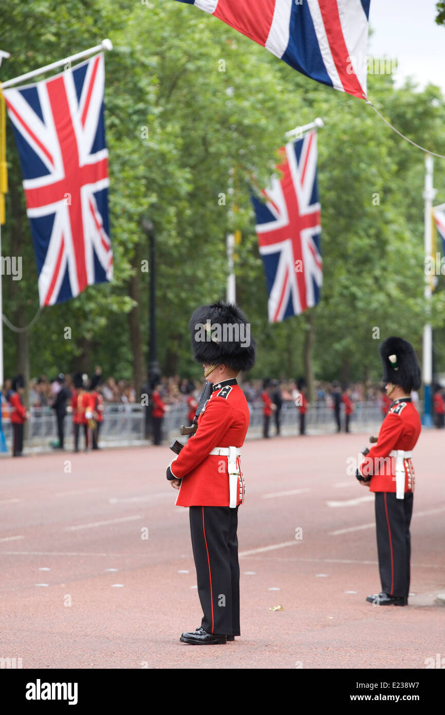 Guardsmen Standing to Attention along the mall for the Trooping the Colour in celebration of the Queens Birthday - Stock Image