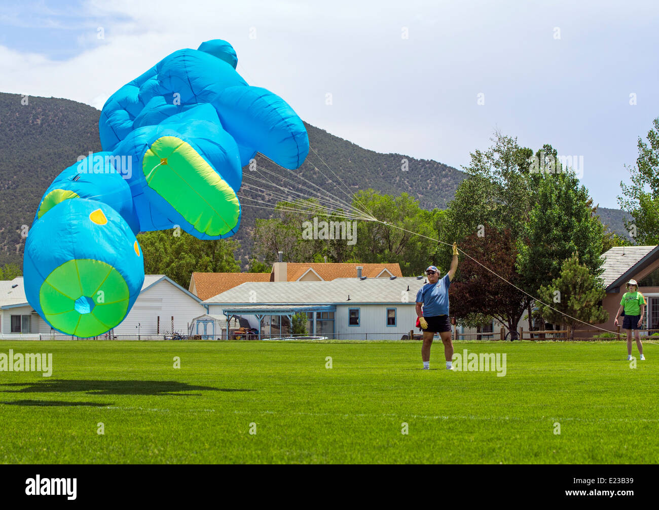 Man launching a large blue bear shaped kite from a park field - Stock Image