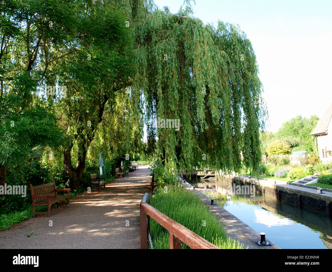 Public benches along the towpath at Iffley Lock, River Thames, Oxford, UK - Stock Image