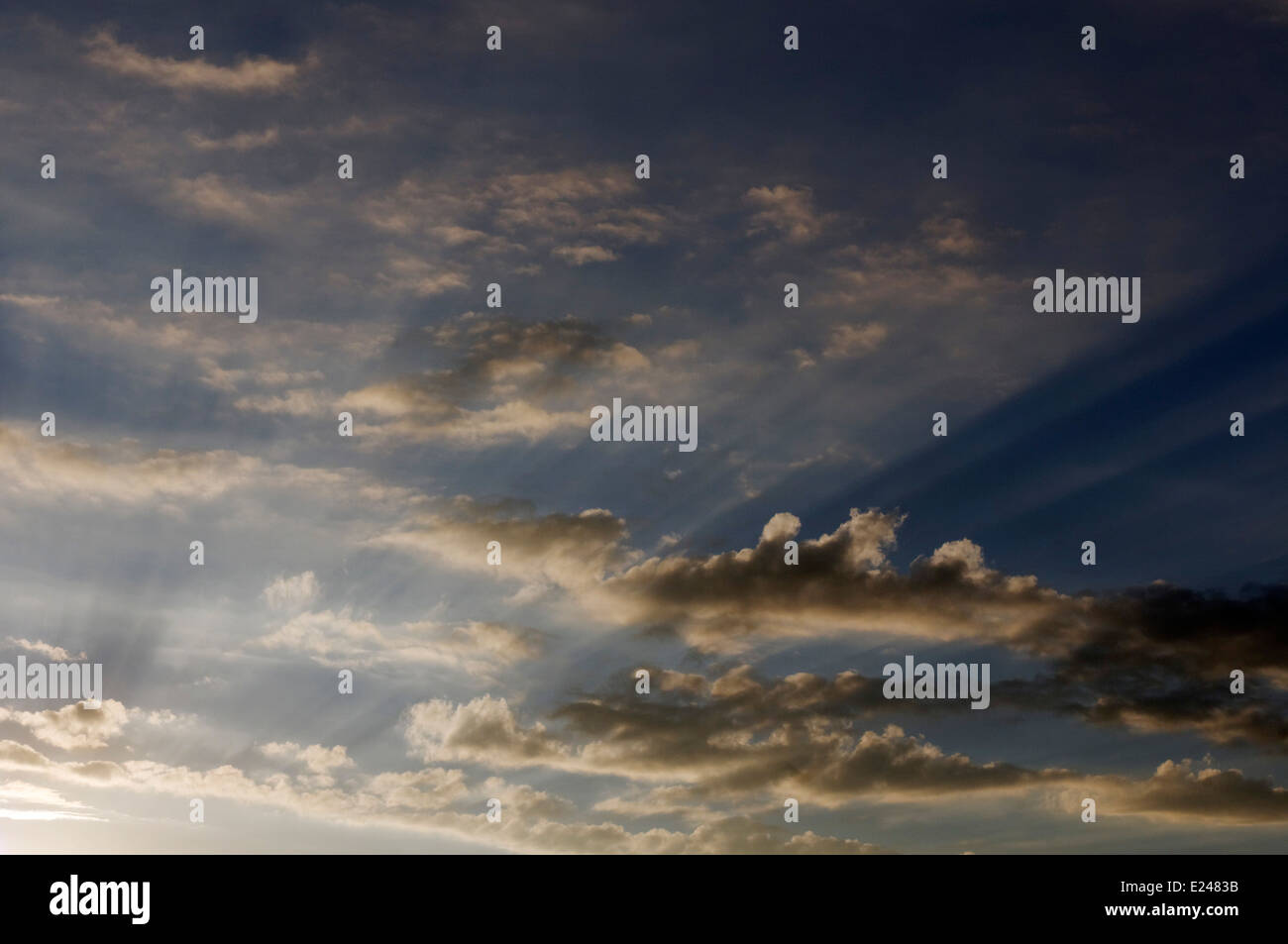 Sun beams at sunset - Stock Image