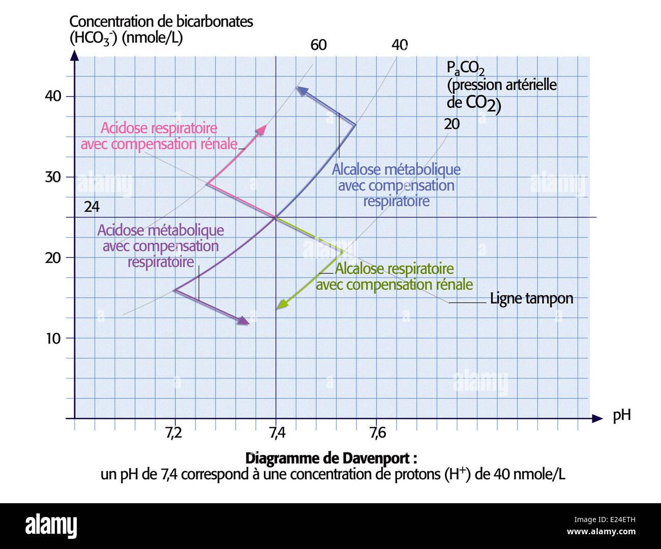 Davenport diagram - Stock Image