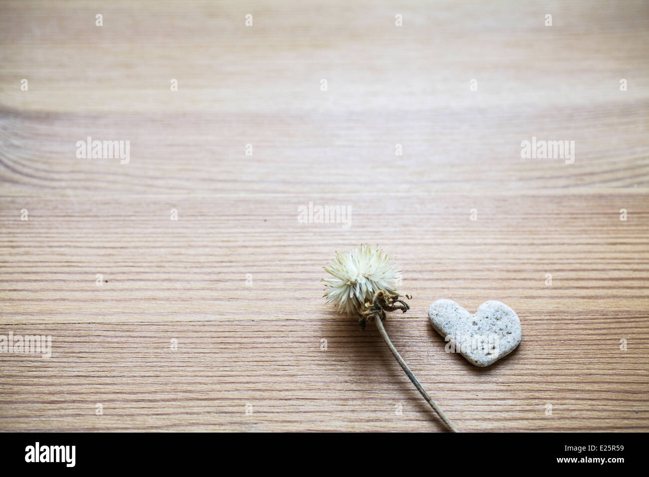 Flower and heart shapes stone on wooden background - Stock Image