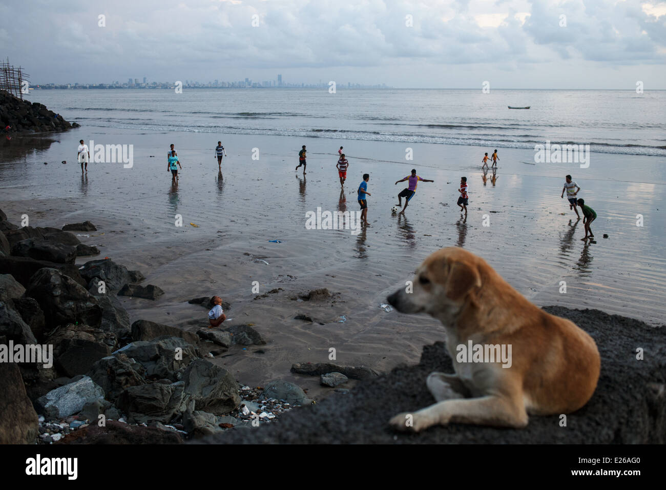 Football match on the beach and a dog in Versova, Mumbai, India - Stock Image