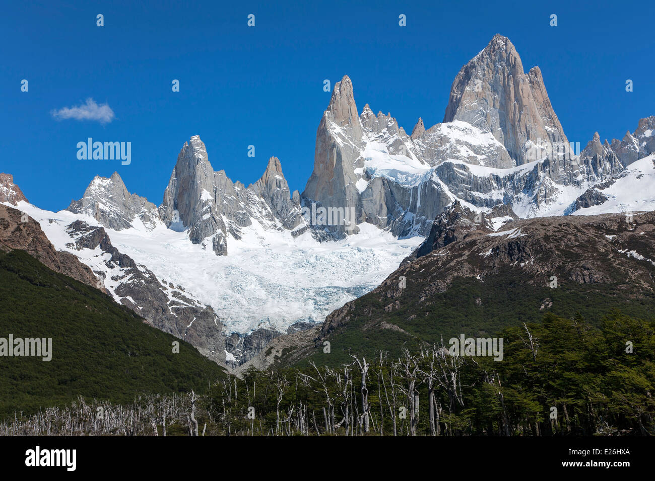 Mount Fitz Roy (3405m). Los Glaciares National Park. Patagonia. Argentina - Stock Image