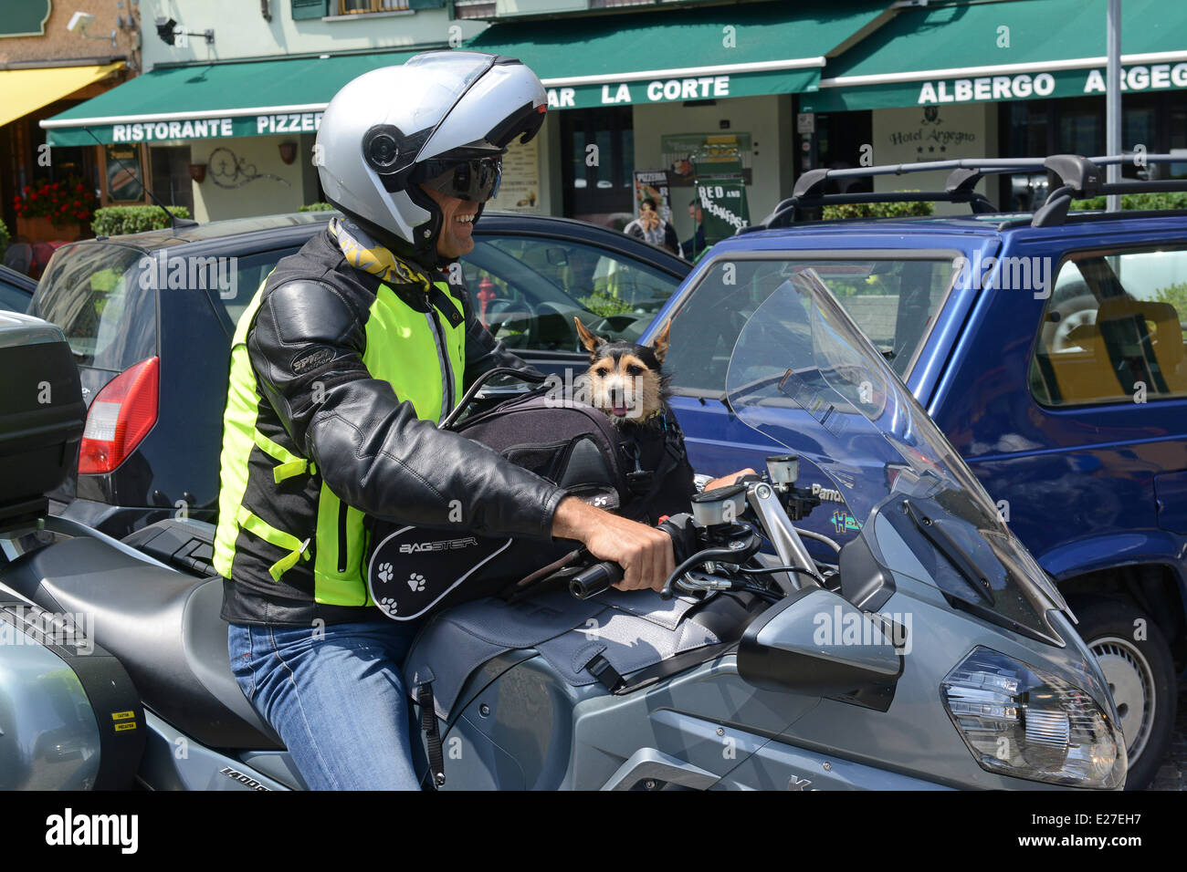 Italian motorcyclist with pet dog in Bagster Dog Basket carrier / motorbike motorcycle pet pampered pets travelling Stock Photo