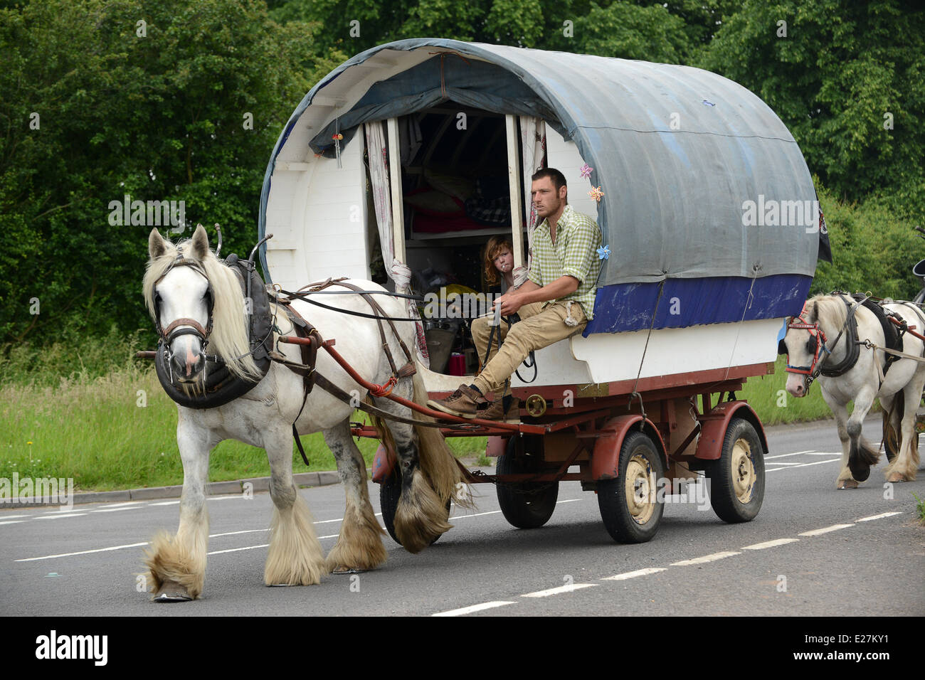 Travellers in bow top horse drawn caravan travelling along busy road in West Midlands Uk / travellers wagon gypsy - Stock Image