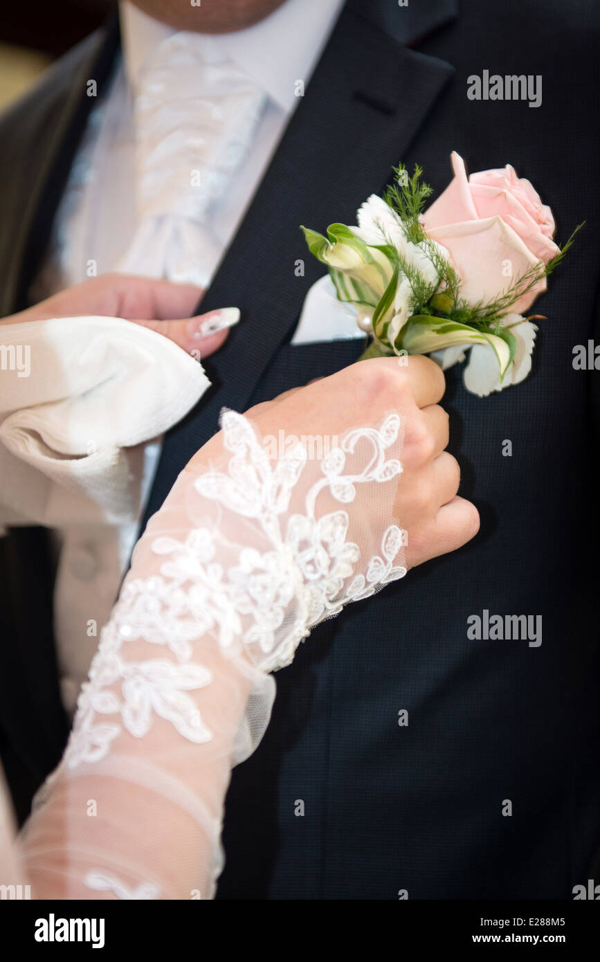 a7bf75b8ad61 Pink rose boutonniere flower on groom's wedding coat Stock Photo ...