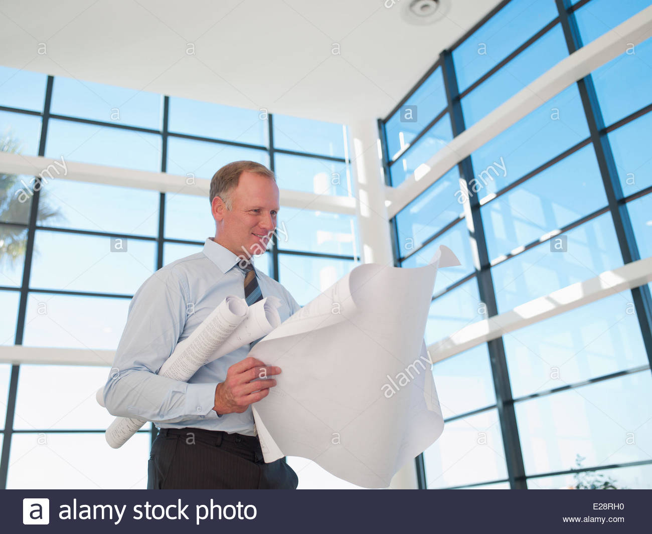 Architect reviewing blueprints - Stock Image