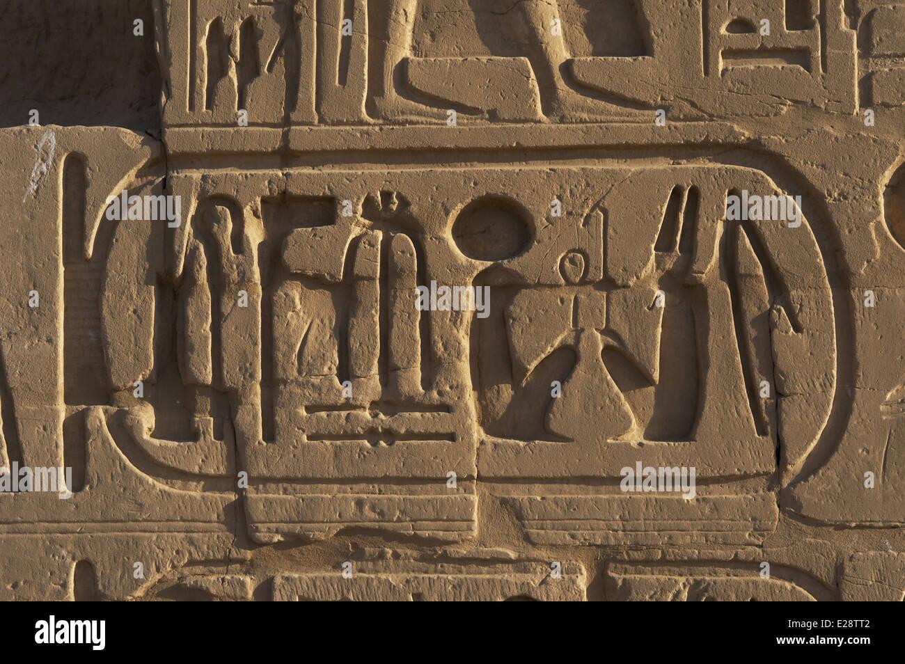 Egypt. The Karnak Temple Complex. Hieroglyphic writing. Royal protocol of Ramesses VI Nebmaatre-Meryamun. - Stock Image