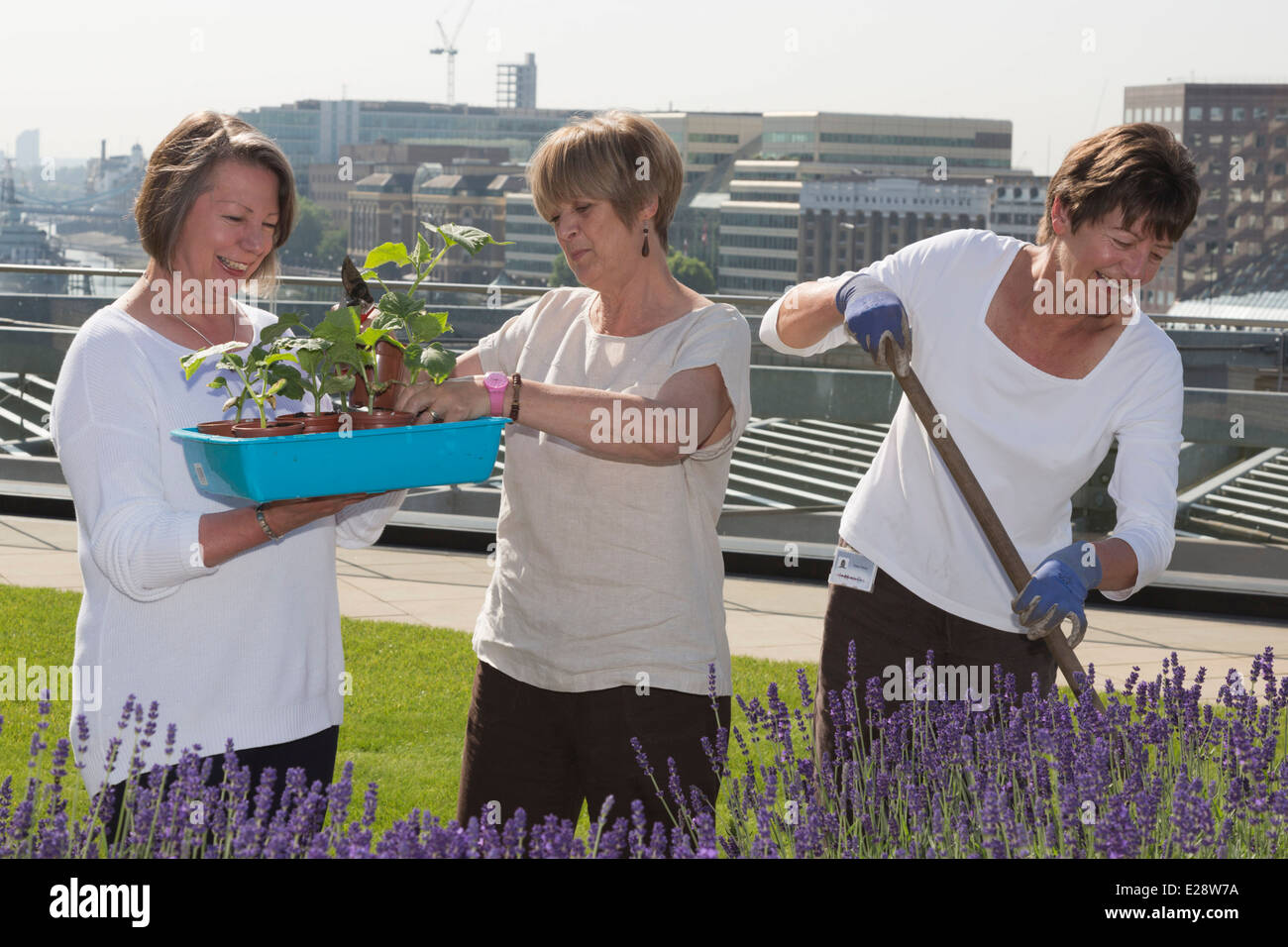 The Roof Gardens Of Nomura S London Offices Open To The