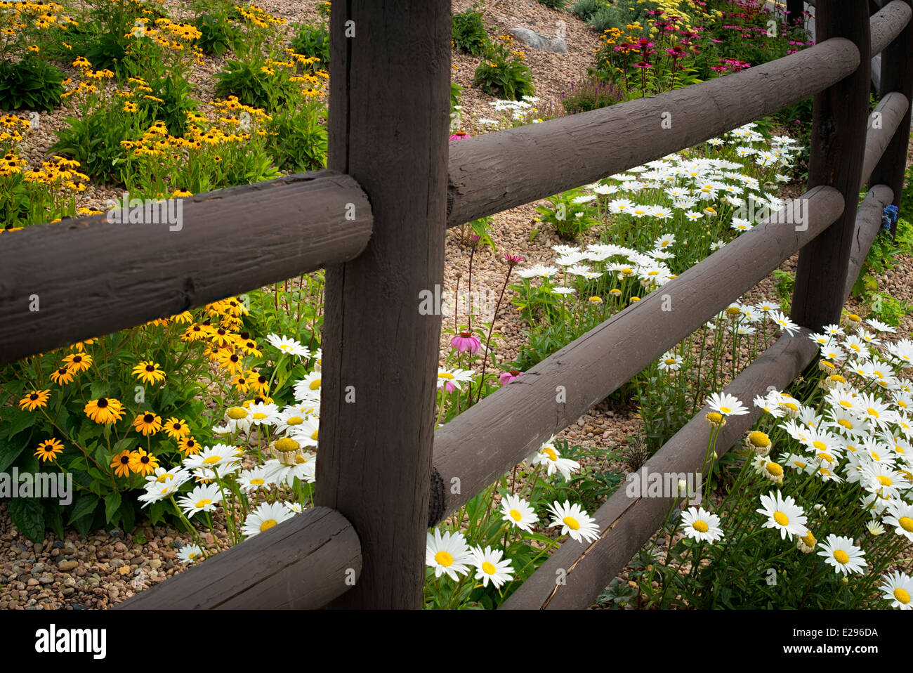 Fence and garden flowers. Vail Village, Colorado - Stock Image