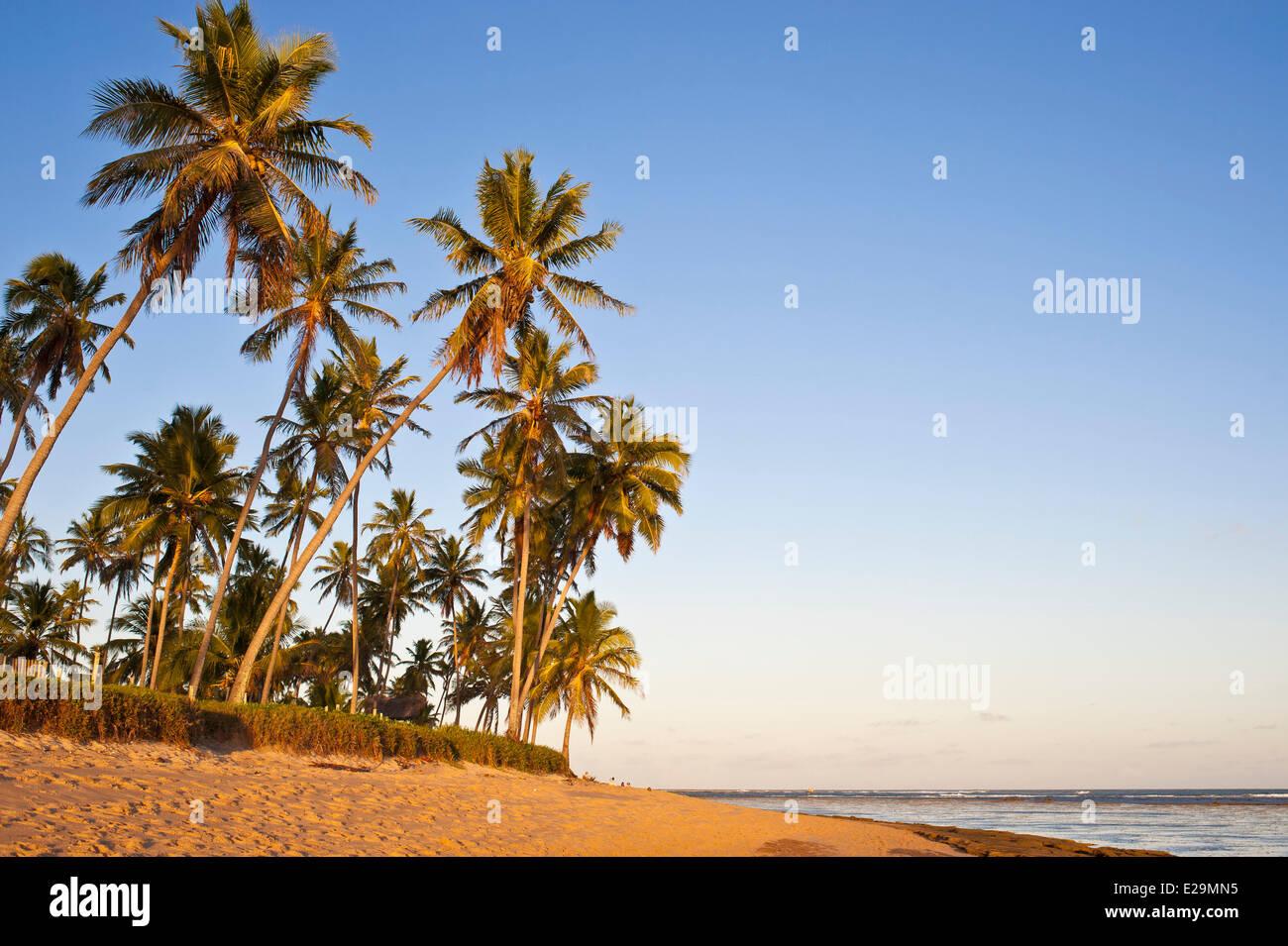 Brazil, Bahia State, Praia do Forte, seaside resort - Stock Image