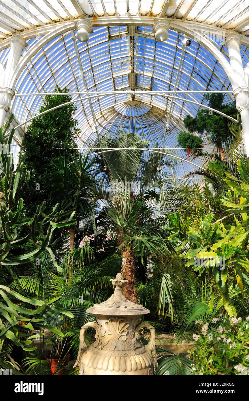 United Kingdom, Northern Ireland, Belfast, the Palm House at the Botanic Gardens - Stock Image