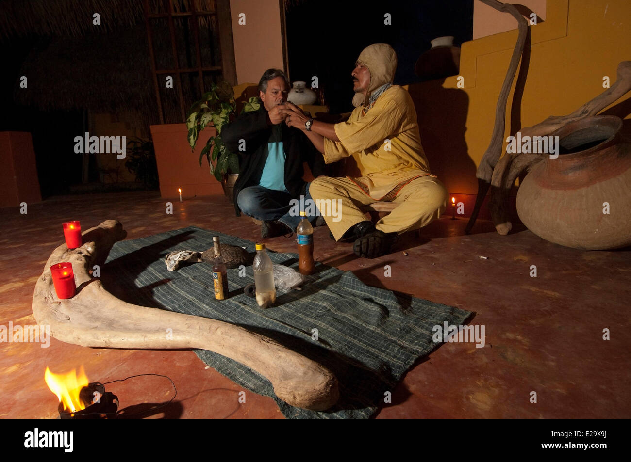 Peru, San Martin province, Lamas, capital of the indigenous people quechua lamistaAyawaska ceremony, a plant with - Stock Image