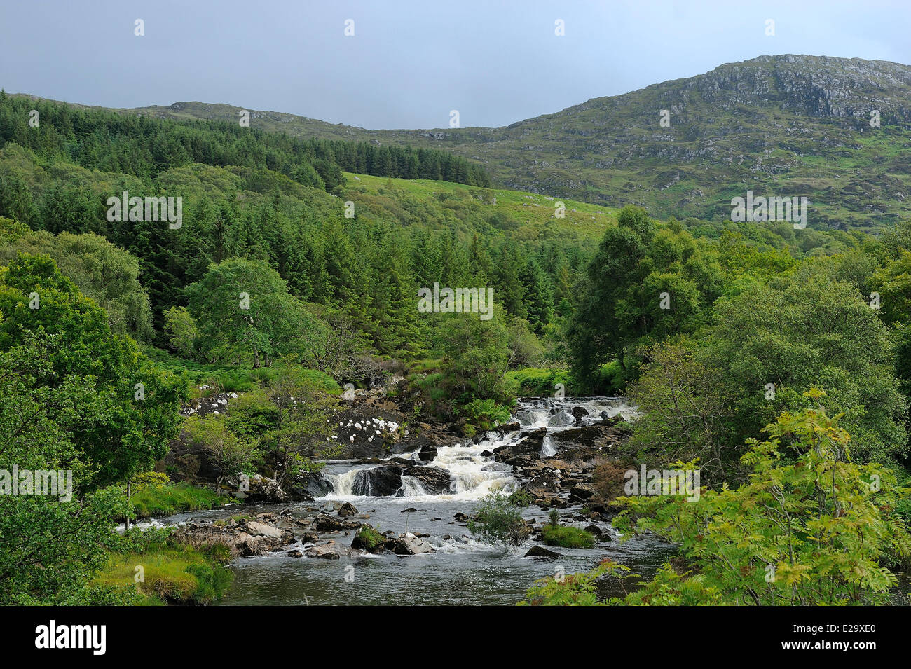 Ireland, County Kerry, Killarney region, Blackwater valley and river - Stock Image