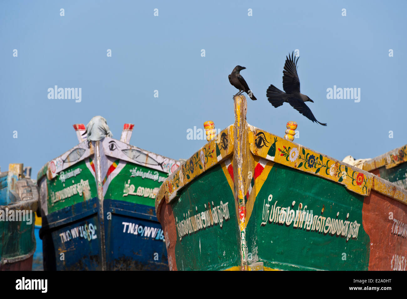 India, Tamil Nadu state, Rameswaram is one of the holy cities of India and an important pilgrimage site for both Stock Photo