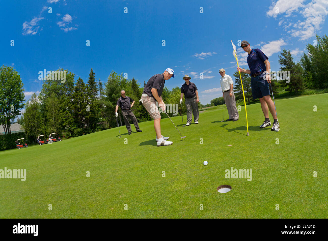 Canada, Quebec Province, golf course, on the green, final blow - Stock Image