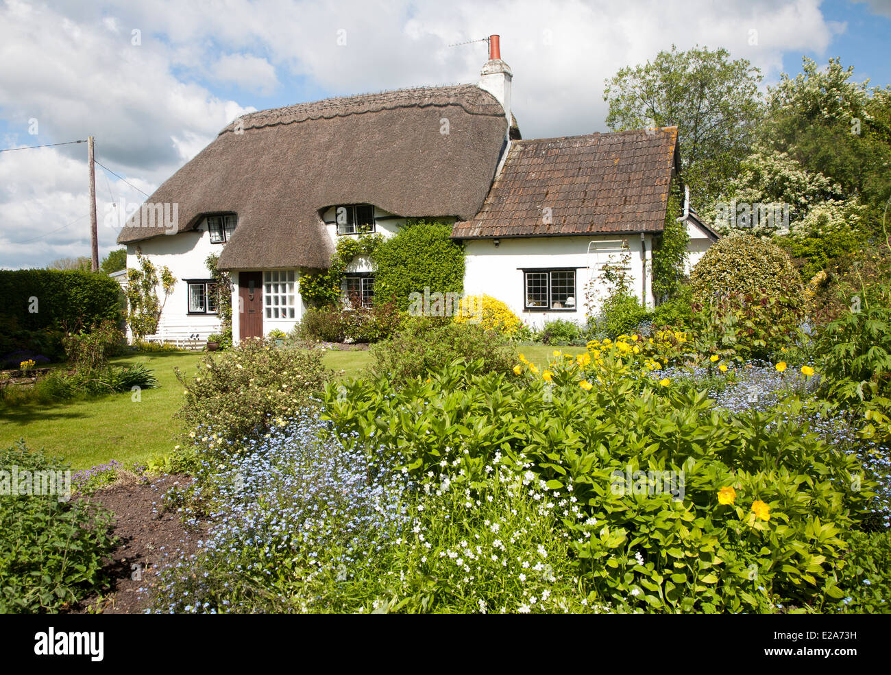 Pretty detached country cottage and garden Cherhill, Wiltshire, England - Stock Image