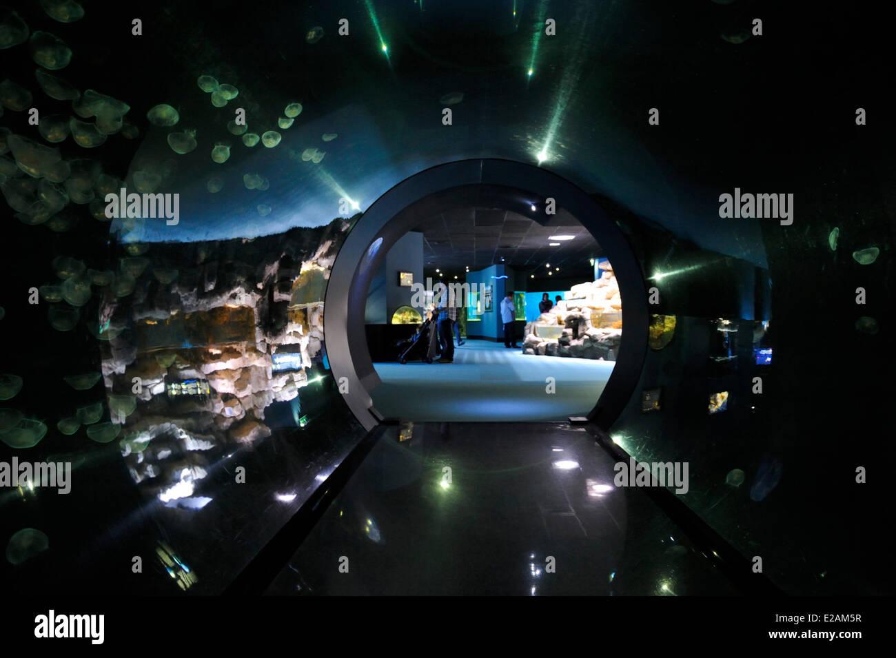 France, Charente Maritime, La Rochelle, Aquarium La Rochelle, Compulsory Mention, airlock - Stock Image