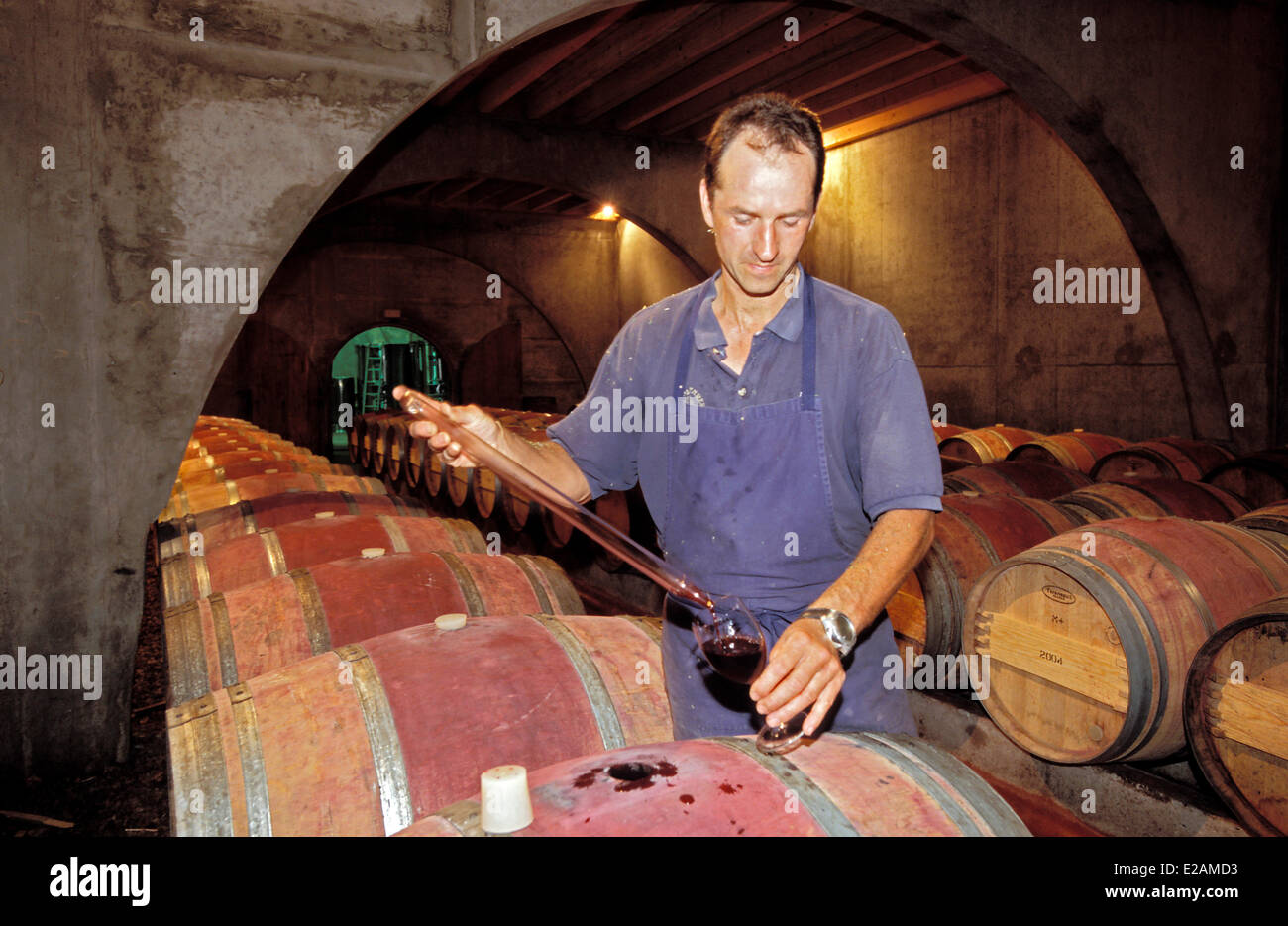 France, Pyrenees Atlantiques, Saint Jean Pied de Port, Domaine Brana Wine domain producing, Jean Brana in his wine - Stock Image