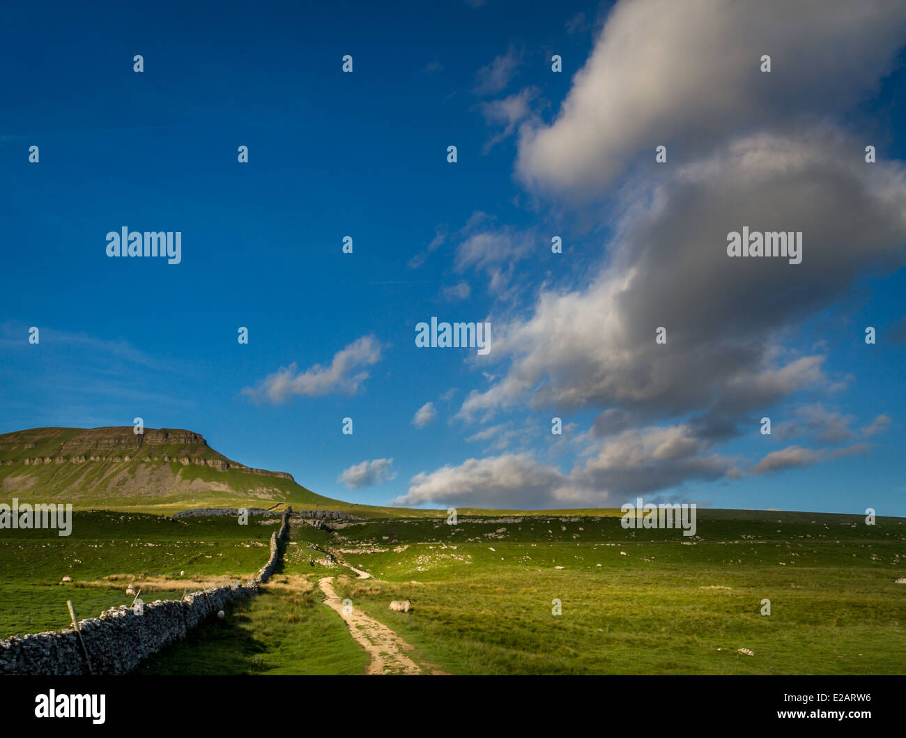 Early morning ascent of Pen-y-Ghent mountain, Yorkshire Dales, UK - Stock Image