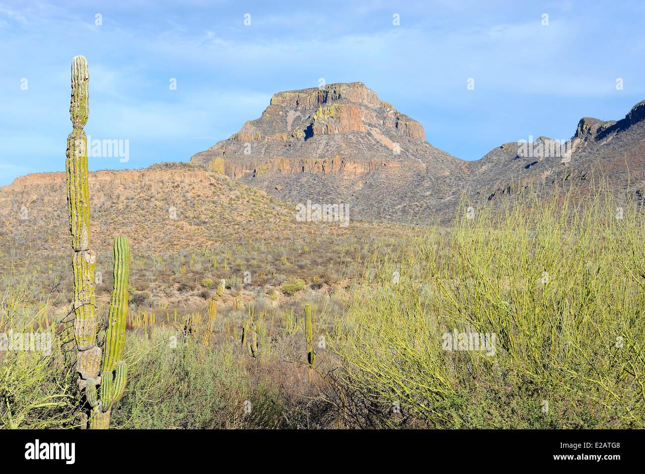 Mexico, Baja California Sur State, Loreto region - Stock Image