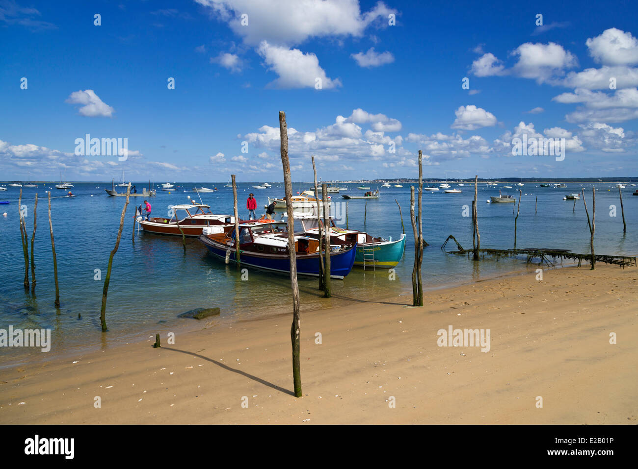 France, Gironde, Arcachon Bay, L'Herbe, Wooden Boat type Arcachon attached to stakes on a beach at low tide Stock Photo