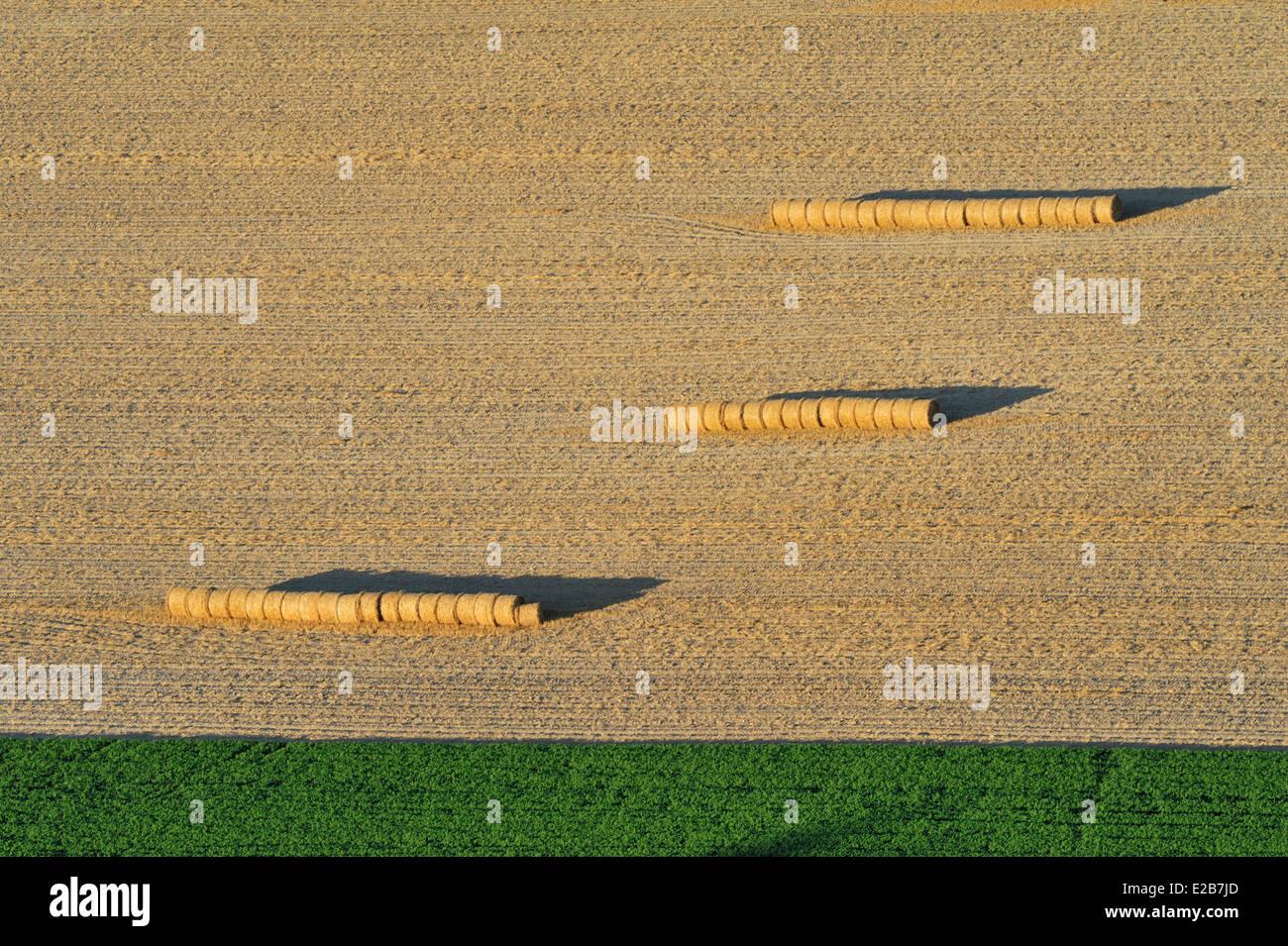 France, Pas de Calais, Loos en Gohelle, straw bales in a field - Stock Image