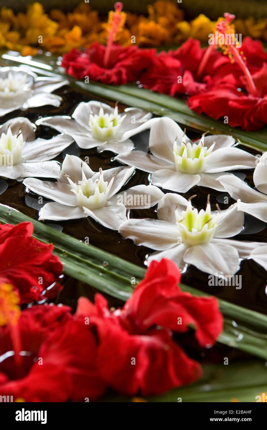 Indonesia, Bali, Ubud, Buahan Payangan, Ubud Hanging Gardens hotel group Orient-Express, floral decoration - Stock Image