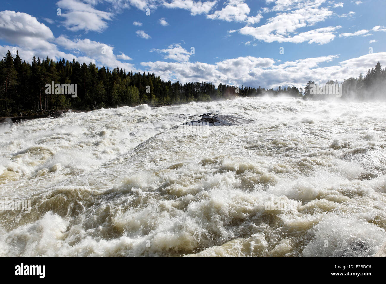 Sweden, Lapland, Norrbotten County, Storforsen waterfall, the biggest natural cataracts of Europe - Stock Image