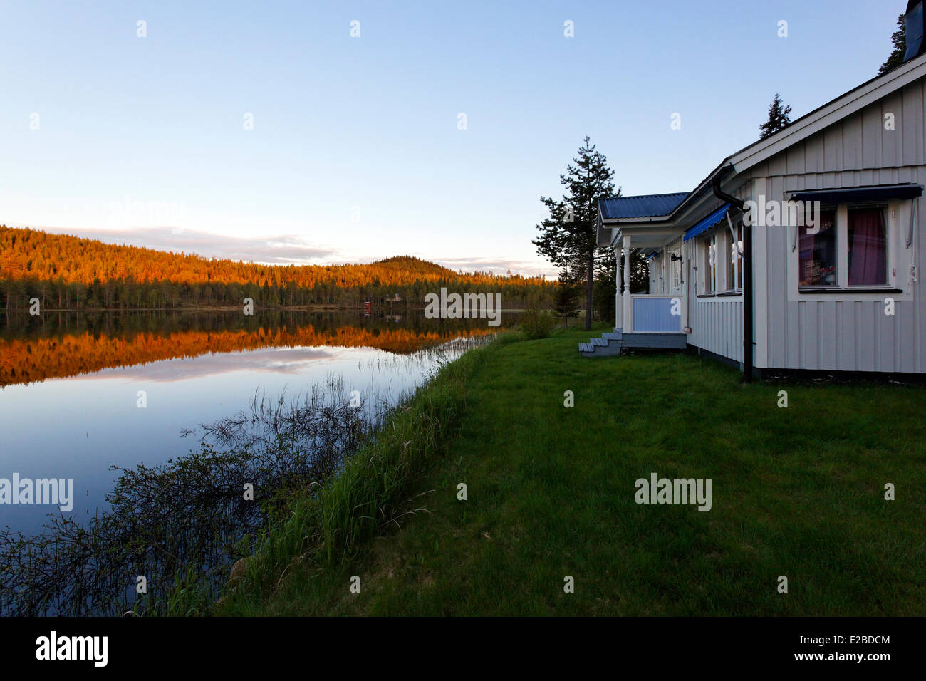 Sweden, Lapland, Norrbotten County, forest around the Lule river valley - Stock Image