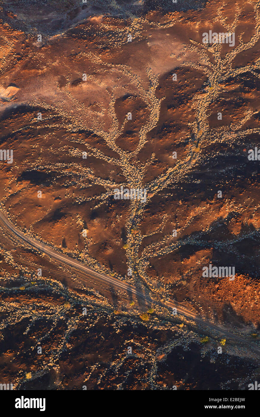 Namibia, Damaraland, Huab River Valley (aerial view) - Stock Image