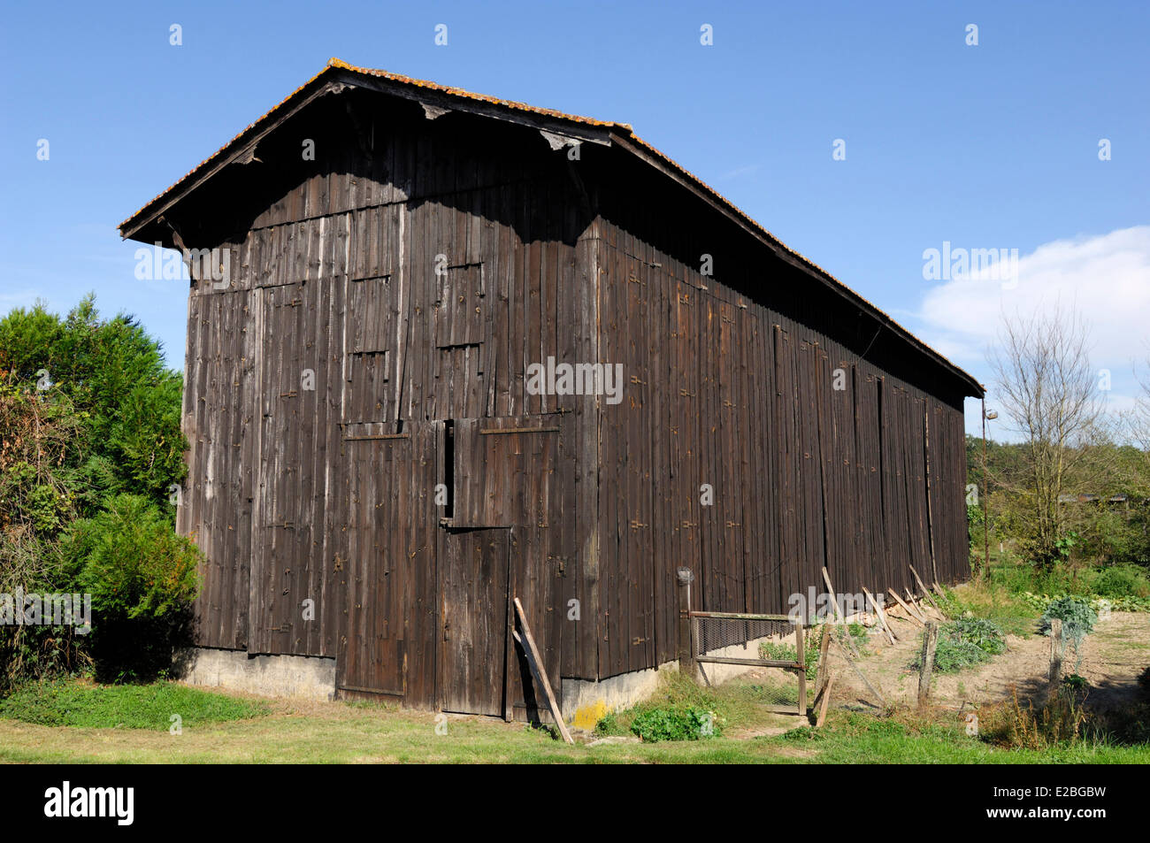 France, Gironde, Puybarban, Tobacco Barn In The Garden Of The Suberbi Farm