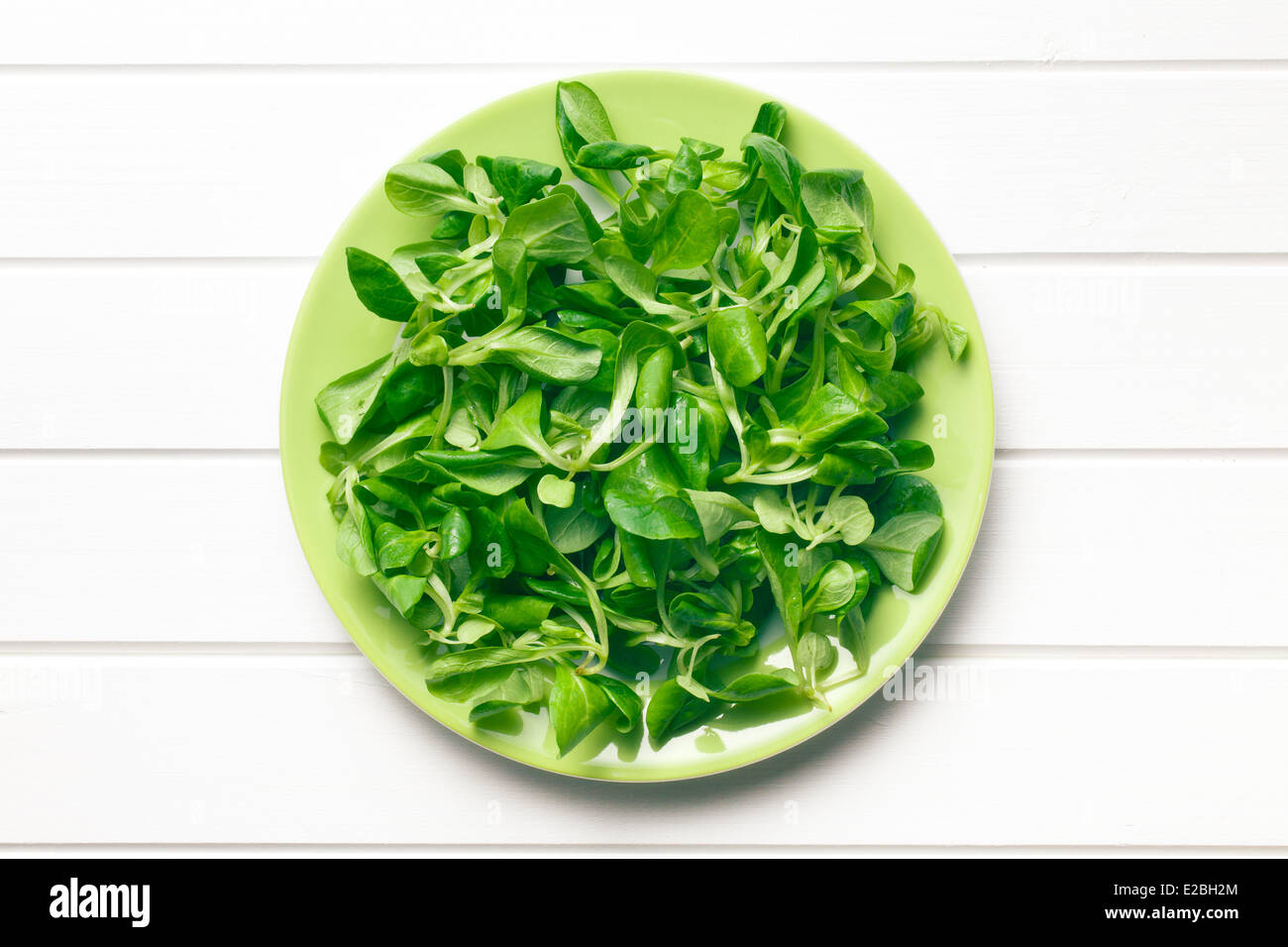 top view of corn salad, lamb's lettuce - Stock Image