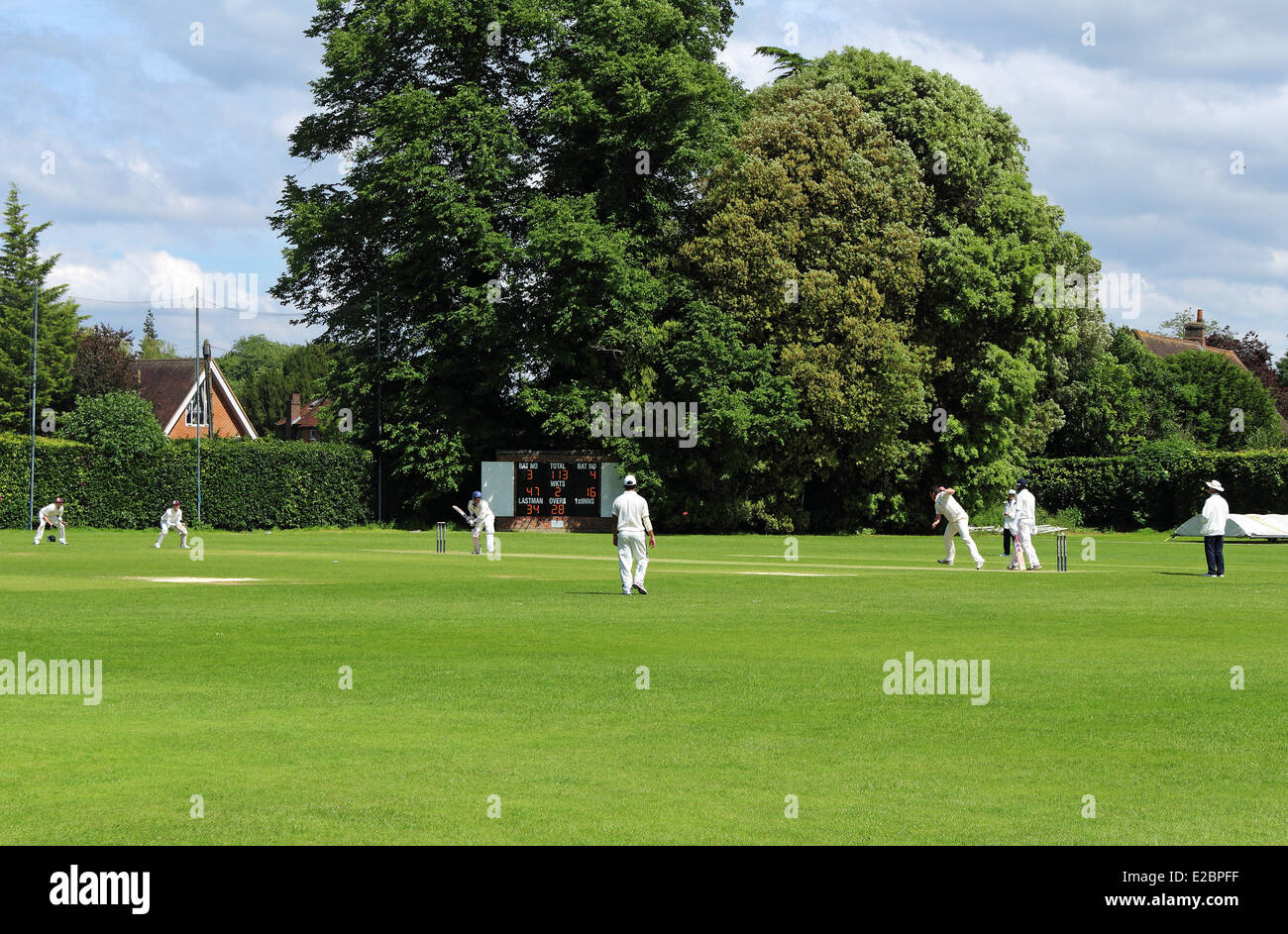 Batsman in action at an English Cricket match - Stock Image