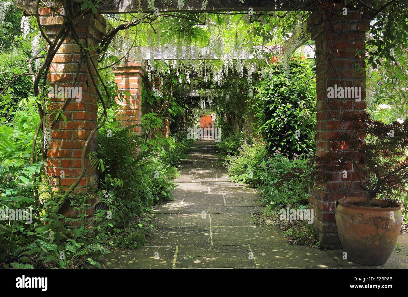 A Pergola Covered In Wisteria In An English Garden
