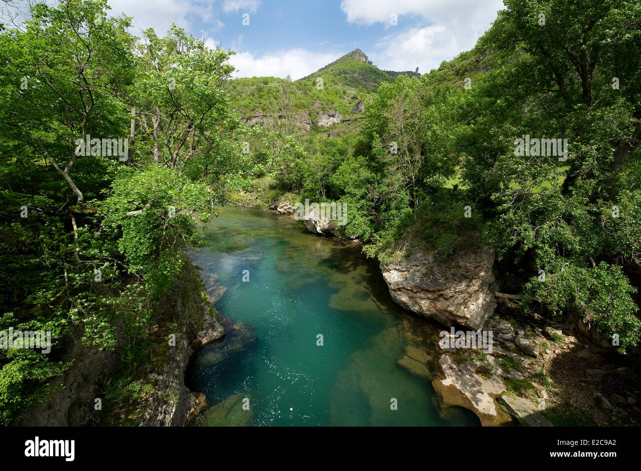 France, Aveyron, Nant, Dourbie Gorge from the deck of the mill body - Stock Image