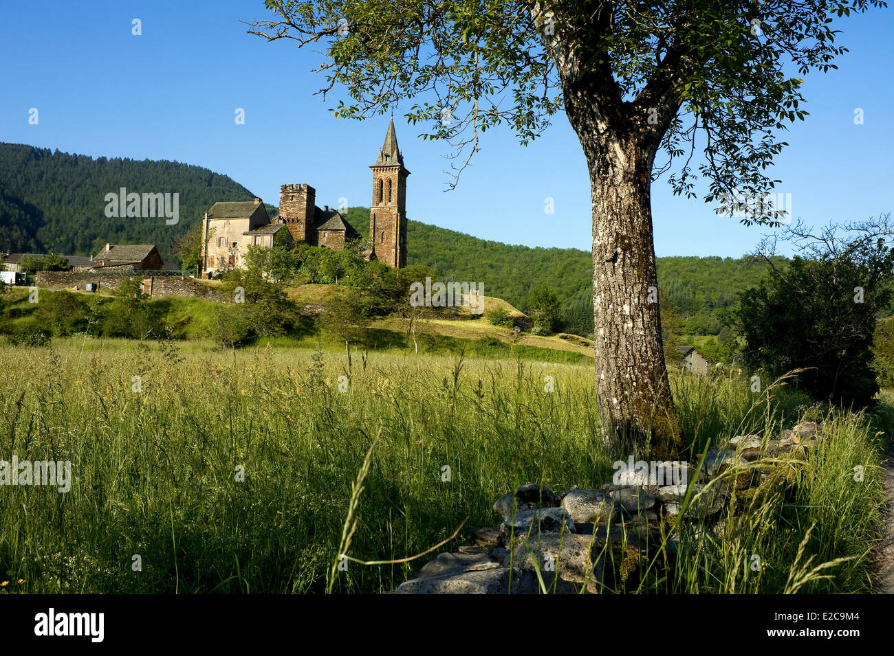 France, Lozere, Bedoues, Collegiate Church of Notre Dame de l'Assomption, fortified church of the 14th century - Stock Image