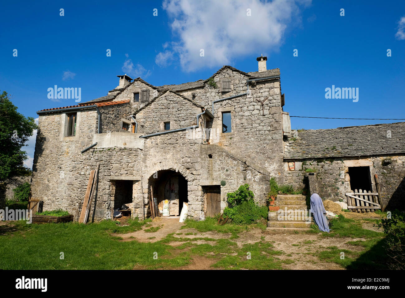 France, Aveyron, Saint Martin du Larzac, plateau of Larzac, sheep farm of Chantal Alvergnas and Thomas Lesay - Stock Image