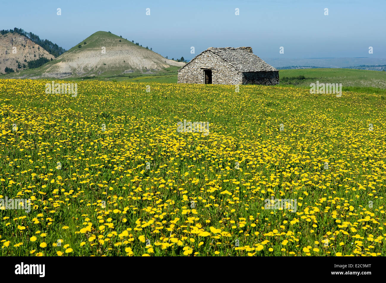 France, Lozere, Les Bondons, the puech or hills detrital - Stock Image