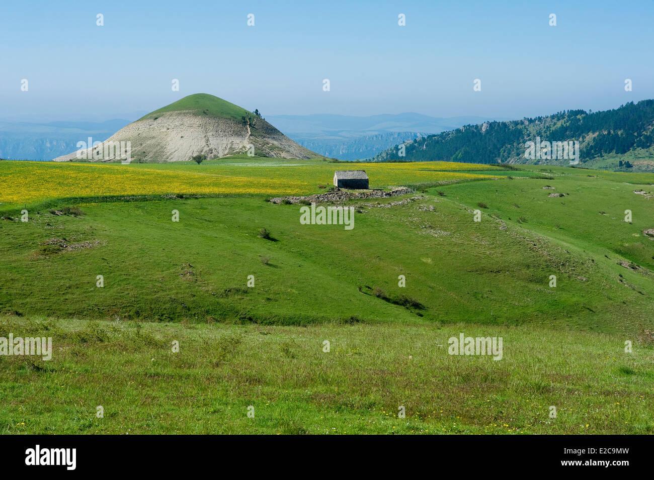 France, Lozere, Les Bondons, the puech or hills detrital Stock Photo