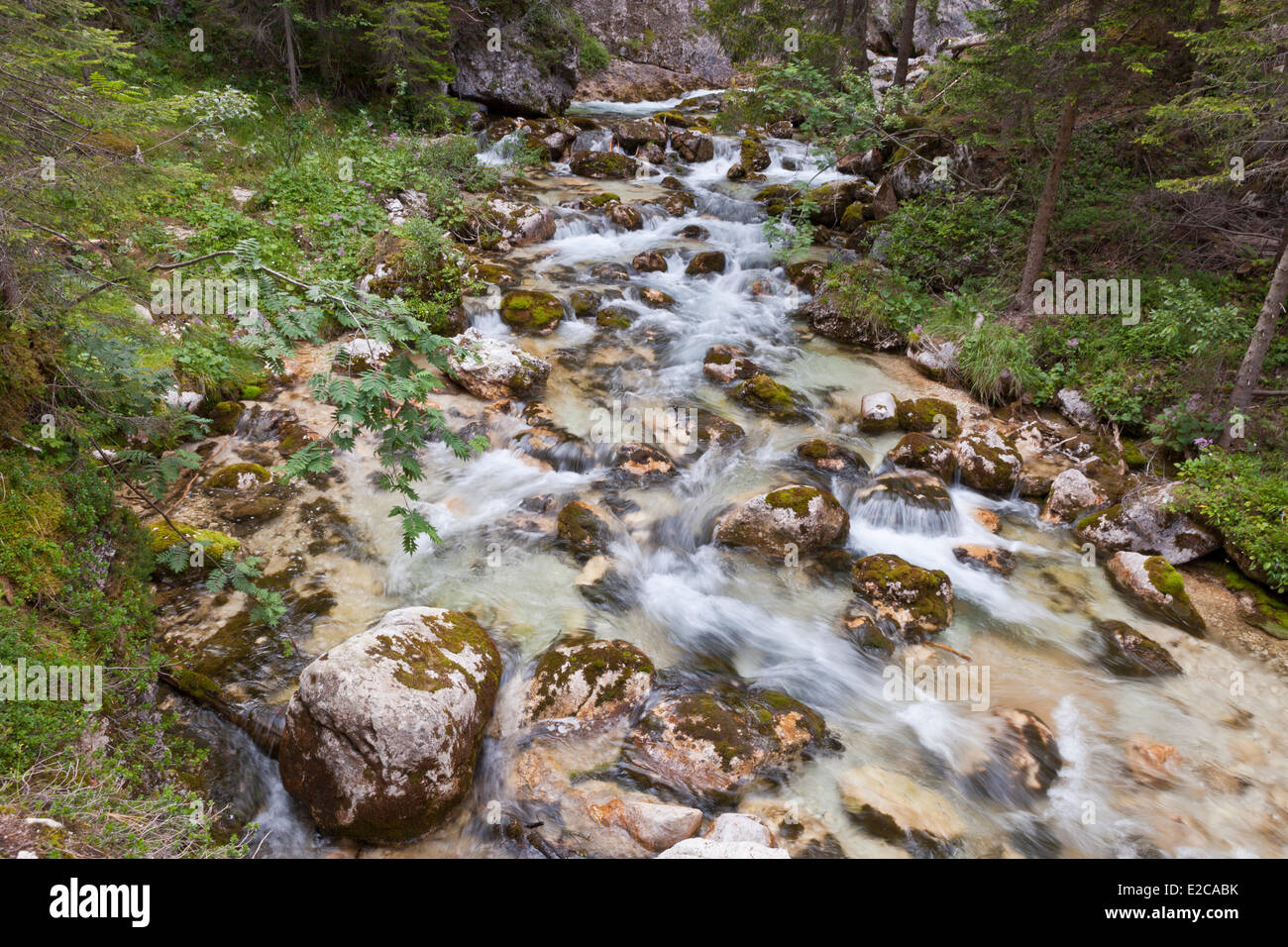 Italy, Venetia, province of Belluno, Dolomites, listed as World Heritage by UNESCO, Cortina d'Ampezzo, Fanes - Stock Image