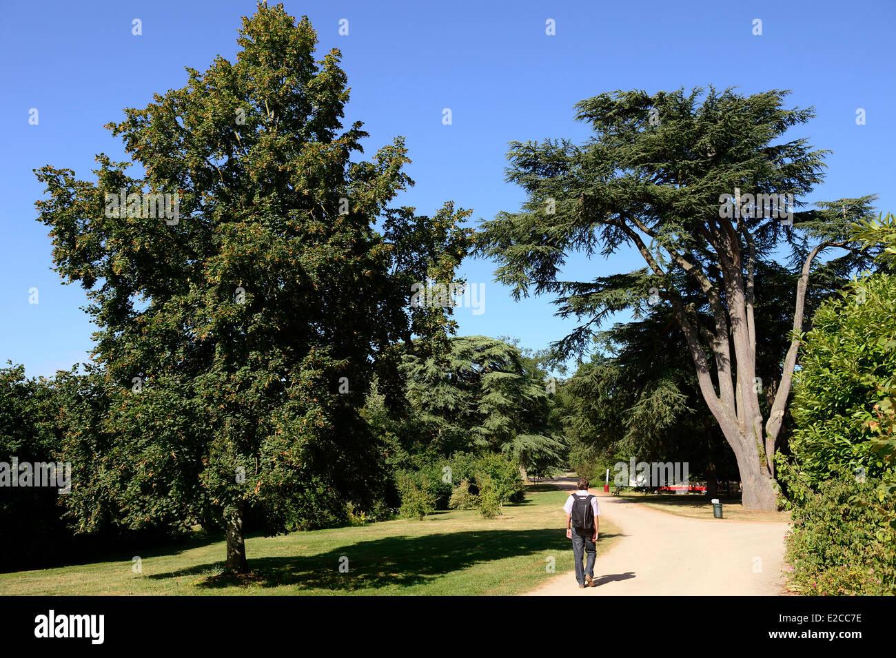 France, Sarthe, Sable sur Sarthe, the garden of the castle - Stock Image