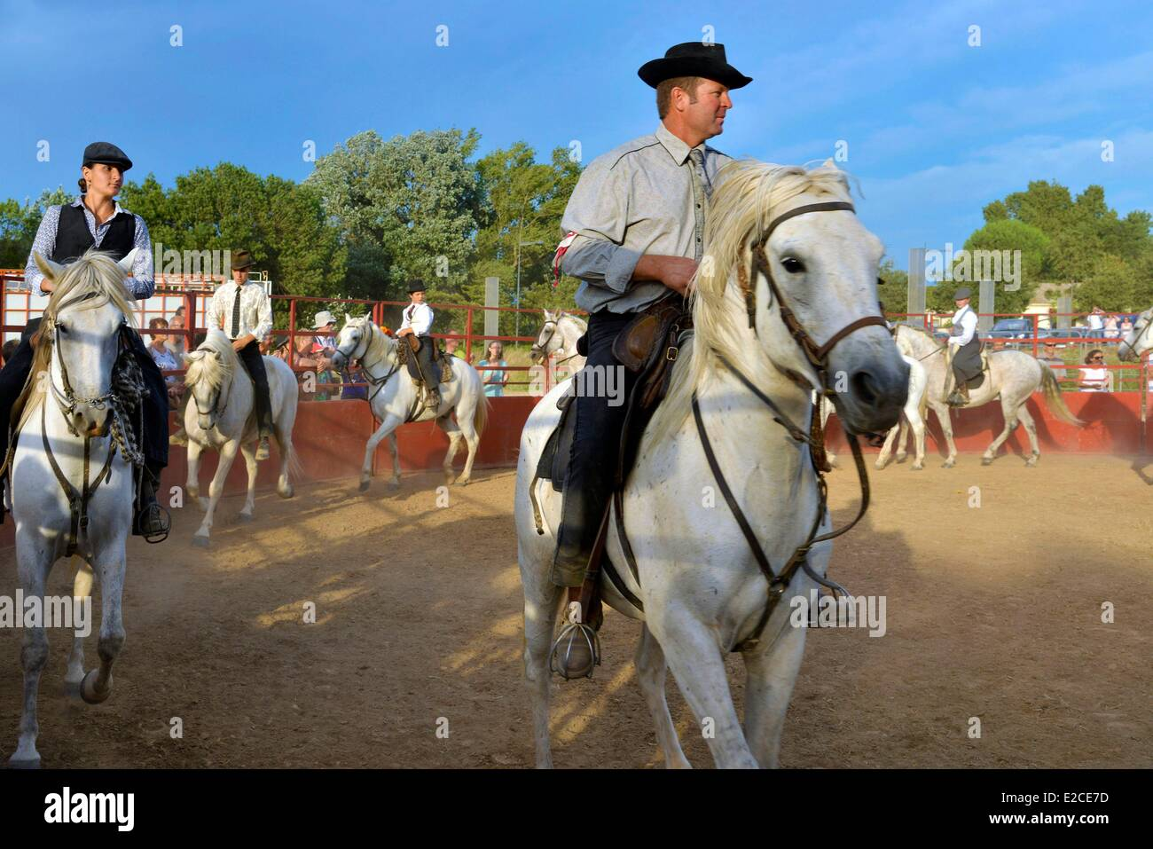 France, Herault, Serignan, annual feria, equestrian show of the Herd of bulls from the Manade Marge - Stock Image