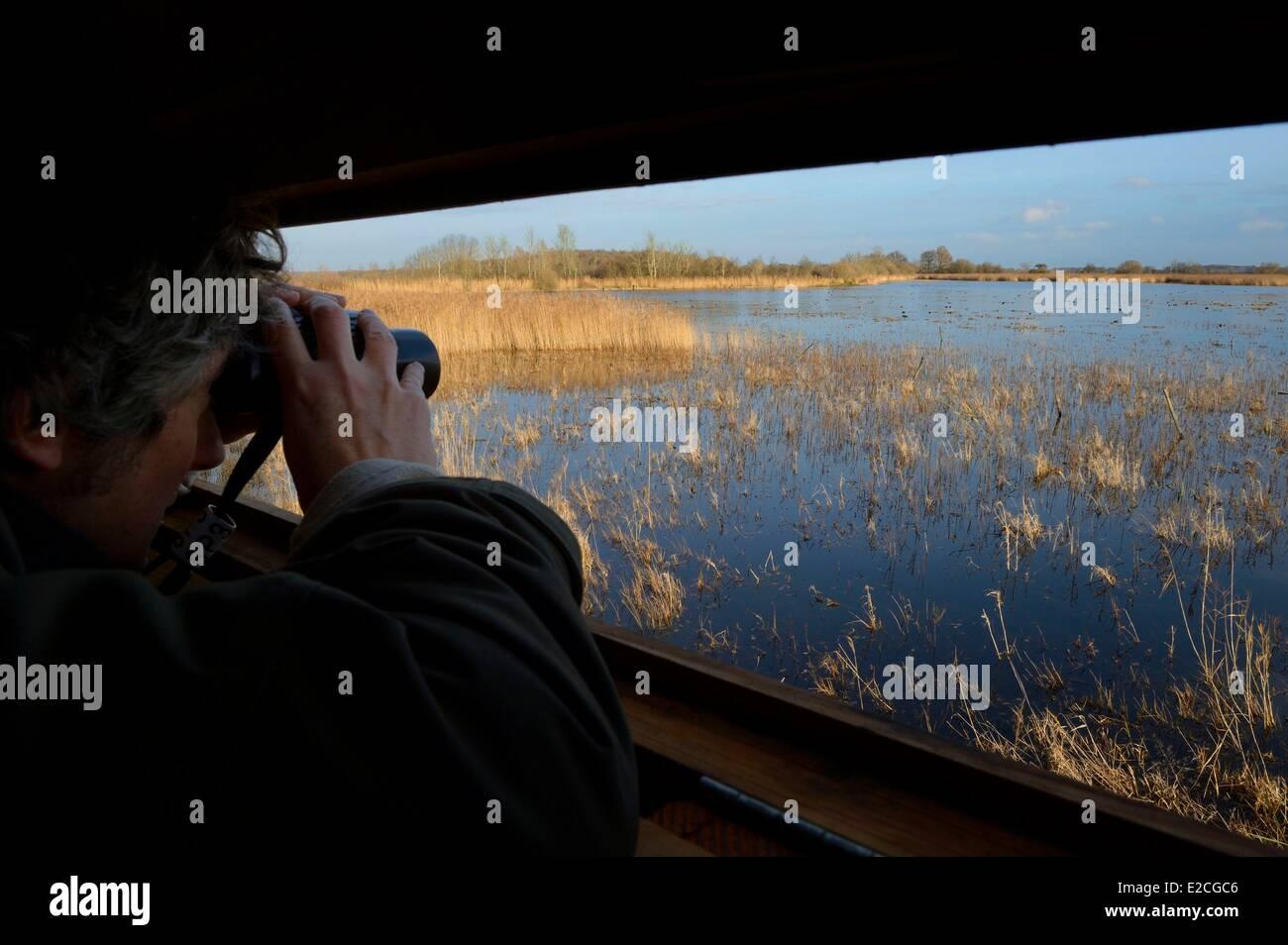 France, Indre, Berry, Parc Naturel Regional de la Brenne (Natural Regional Park of La Brenne), La Touche pond, observatory - Stock Image
