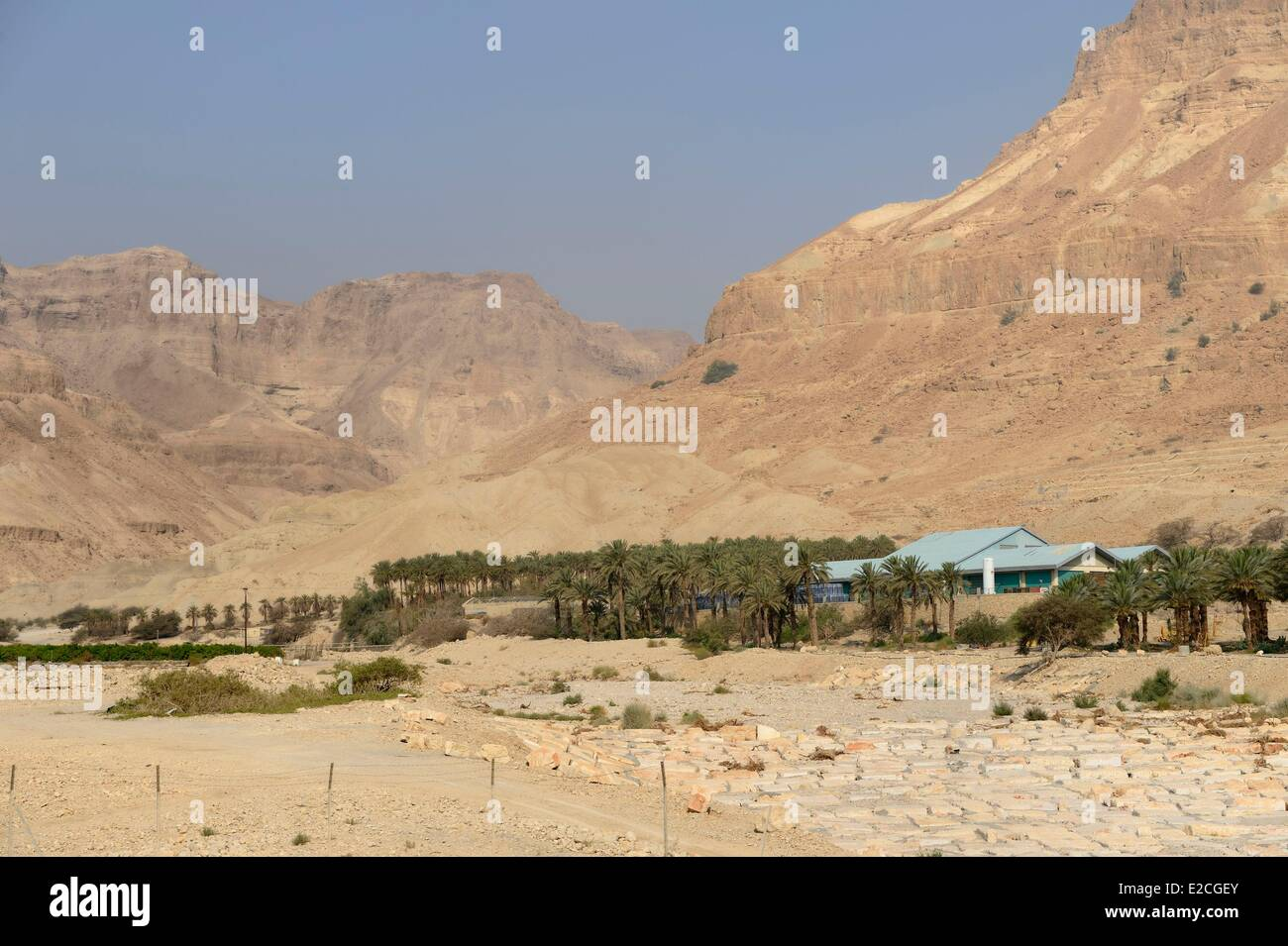 Palestine, West Bank (disputed territory), Kibbutz on the Dead Sea - Stock Image