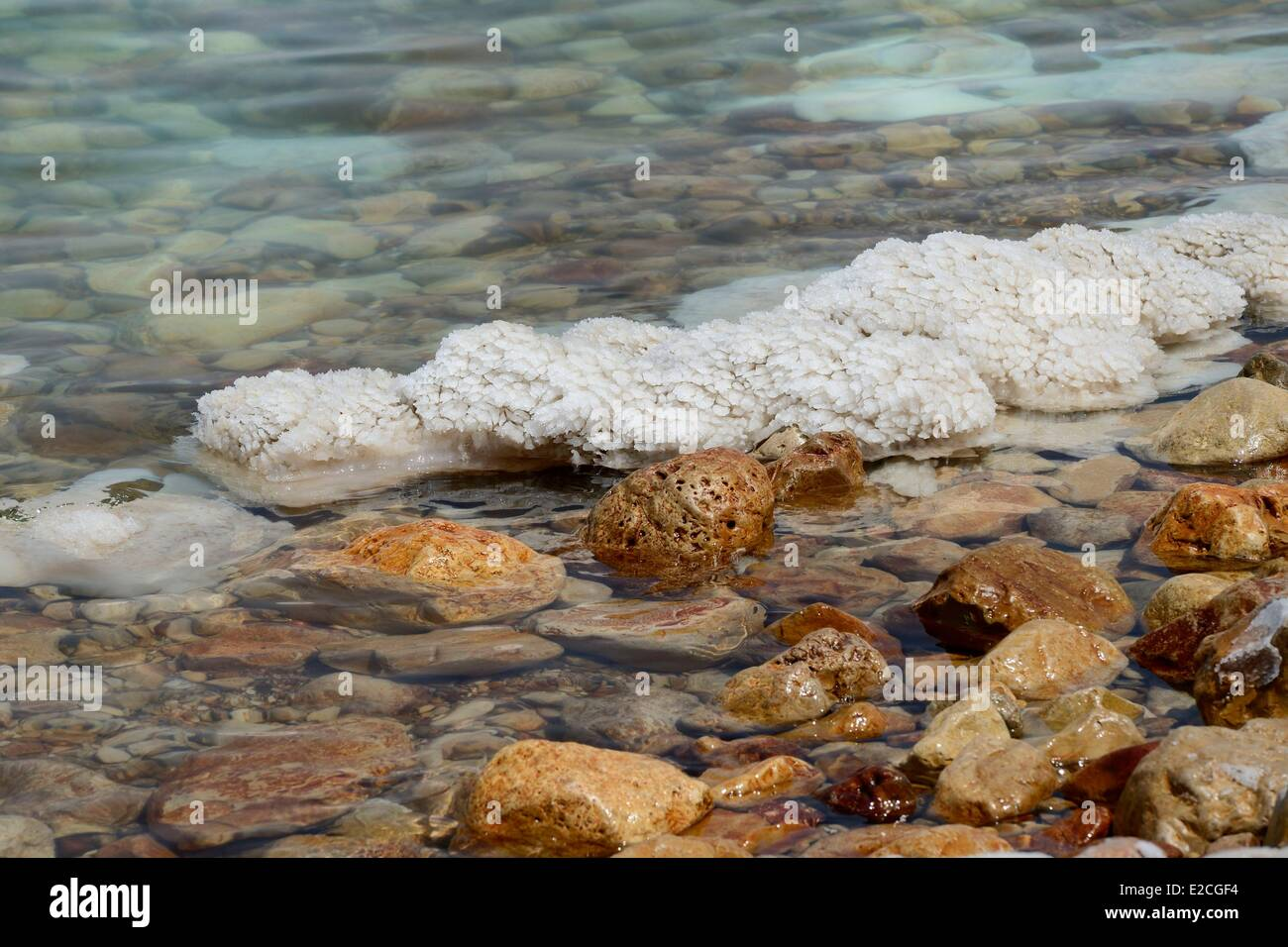 Israel, Southern district, Ein Gedi Beach on the Dead Sea, saline concretions - Stock Image